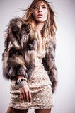 Portrait of attractive stylish woman in fur against grey background. Royalty Free Stock Images