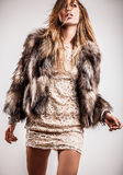 Portrait of attractive stylish woman in fur against grey background. Royalty Free Stock Photo