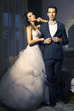Portrait of attractive wedding couple stock photography