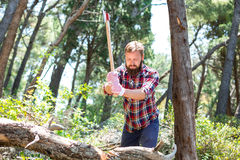 Portrait of an attractive young lumberjack Stock Photos