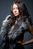 Portrait of attractive young model Royalty Free Stock Images
