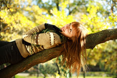 Portrait of autumn smiling girl lying on tree Stock Photography