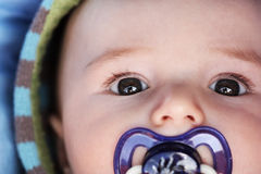 Portrait baby. Portrait of a baby with a pacifier in his mouth Stock Photos