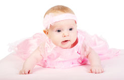 Portrait of the baby Stock Image
