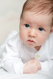 Portrait of baby Stock Images