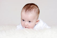 Portrait of baby age of 4 months Stock Images