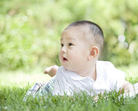 Portrait of a baby Stock Photography
