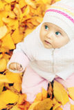 Portrait of baby at autumn park with yellow leaves background royalty free stock photos