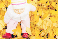 Portrait of baby at autumn park with yellow leaves background royalty free stock photo