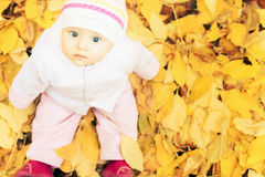 Portrait of baby at autumn park with yellow leaves background stock images