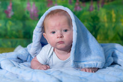 Portrait of a baby in a blue towel. On the green carpet Royalty Free Stock Photo