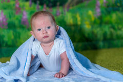Portrait of a baby in a blue towel. On the green carpet Stock Photography