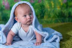 Portrait of a baby in a blue towel. On the green carpet Stock Image