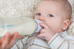 Portrait of a baby with a bottle Stock Photos