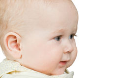 Portrait baby boy Royalty Free Stock Photos