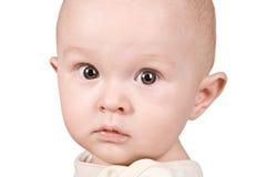 Portrait baby boy Stock Photos