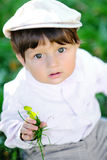 Portrait of a baby boy Royalty Free Stock Photo
