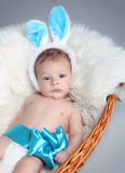Portrait of baby boy  with bow on white fur coat in basket Stock Photos
