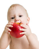 Portrait of baby boy eating apple Stock Photography