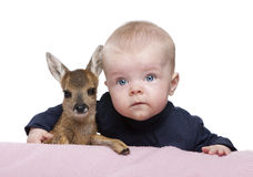 Portrait of baby boy with Fallow Deer Fawn Royalty Free Stock Photo