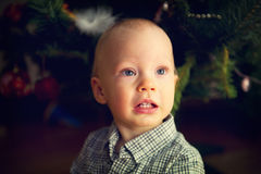 Portrait of baby boy in front of Christmas tree Stock Image