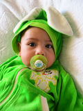 Portrait of a baby boy in a rabbit costume with a babys dummy in his mouth Royalty Free Stock Photo