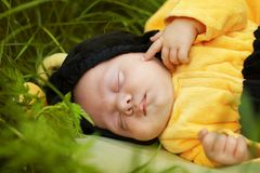 Portrait of baby dressed as bee Stock Photos