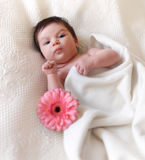 Portrait of a baby with flower. Lying on the bed. One month old royalty free stock photo