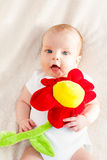 Portrait of a baby with flower Royalty Free Stock Photo