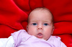 Portrait of a baby-girl Royalty Free Stock Images