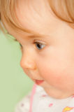 Portrait of baby girl Stock Photography
