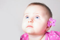 Portrait of a baby girl with blue eyes looking up stock image