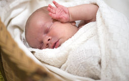 Portrait of a baby girl sleeping in a basket . royalty free stock photo