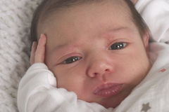 Portrait of baby girl. Portrait of a two week old baby girl lying supine with eyes open and with fingers touching her face stock photos