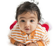 Portrait of a Baby Girl on White Background. Portrait of a Baby Girl lying on her tummy on a White Background stock images