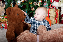 Portrait of Baby on horse (toy) little boy Royalty Free Stock Image