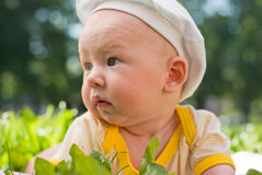 Portrait of a baby lying on the grass Stock Photo