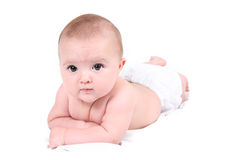 Portrait of baby lying prone Royalty Free Stock Photo