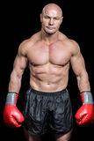 Portrait of bald man with boxing gloves Stock Images