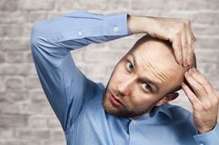 Portrait of a bald man looking at his balding head with a short haircut in a blue shirt. Hair transplant concept: white sad. Caucasian guy on Brick wall royalty free stock photo