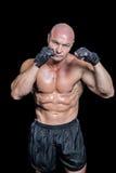 Portrait of bald muscular man Stock Photos