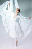 Portrait of a ballerina Royalty Free Stock Photography