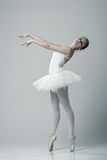 Portrait of the ballerina in ballet pose Royalty Free Stock Photo