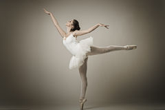 Portrait of the ballerina in ballet pose Royalty Free Stock Photography