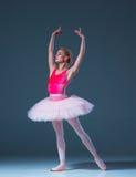 Portrait of the ballerina in ballet pose Stock Photos