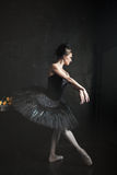 Portrait of the ballerina in ballet tatu on black Stock Images