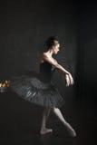 Portrait of the ballerina in ballet tatu on black Stock Images