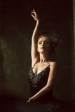 Portrait of the ballerina in ballet tatu on black Royalty Free Stock Photography