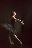 Portrait of the ballerina in ballet tatu on black Stock Photography