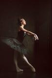Portrait of the ballerina in ballet tatu on black Stock Photography